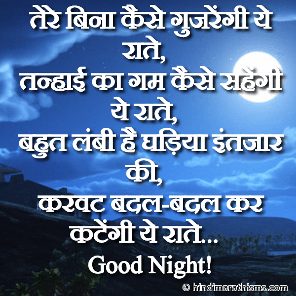 Tere Bina Kaise Gujrengi Ye Raate GOOD NIGHT SMS HINDI Image