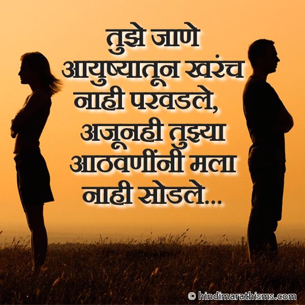Tujhe Jane Ayushyatun Kharach Nahi Parvadale Image
