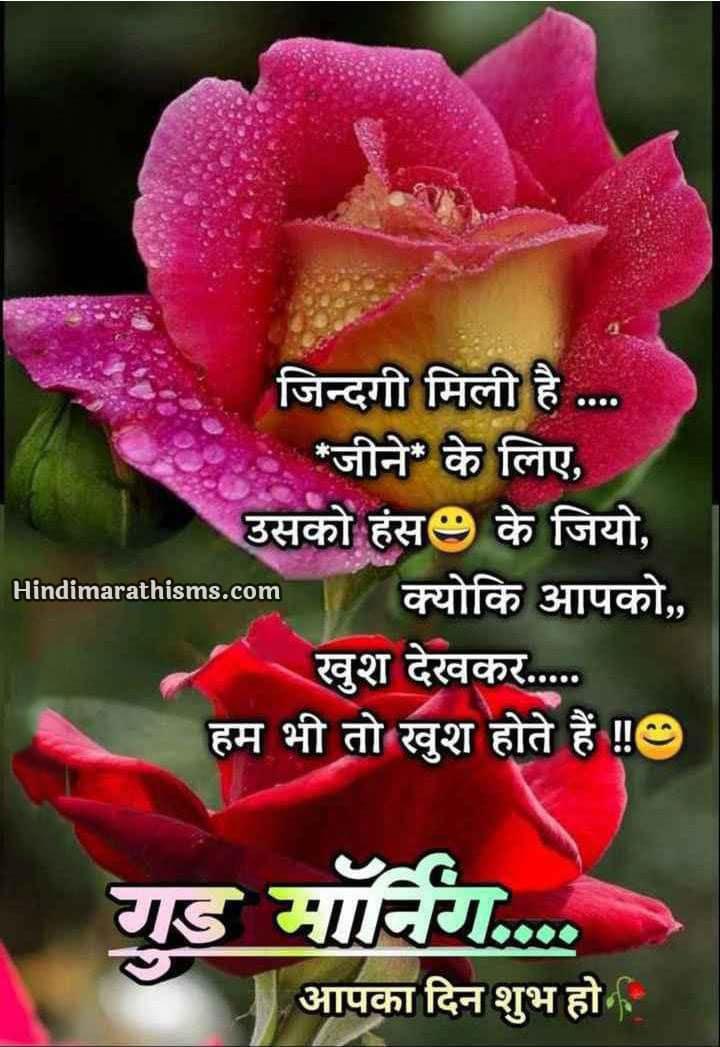 Good Morning Wishes Hindi   500+ Best शुभ प्रभात, सुप्रभात ...