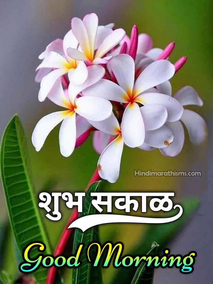Good Morning Marathi Pic